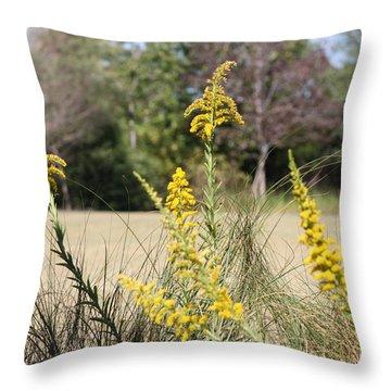 Autumn  Throw Pillow by Debra Forand