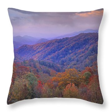 Autumn Deciduous Forest Great Smoky Throw Pillow by Tim Fitzharris