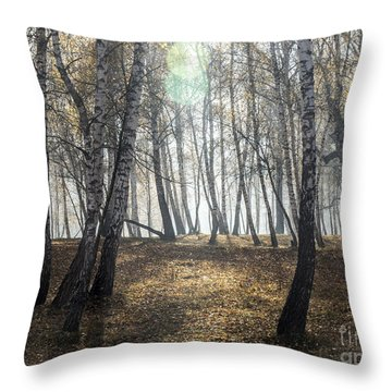 Autumn Deep Fog In The Morning Birch Grove Throw Pillow