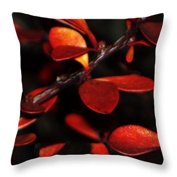 Autumn Details Throw Pillow