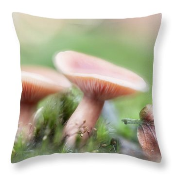 Throw Pillow featuring the photograph Autumn Dream by Dirk Ercken