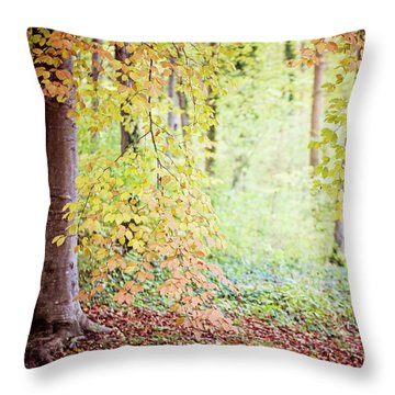 Autumn Dreams Throw Pillow by Melanie Alexandra Price