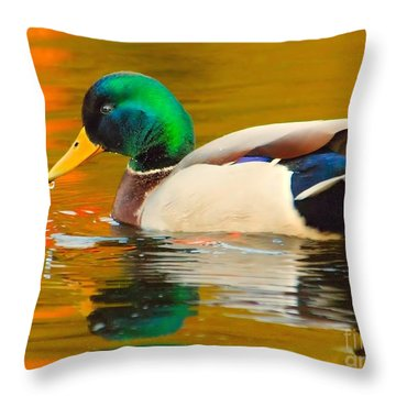 Autumn Duck Throw Pillow by Debbie Stahre