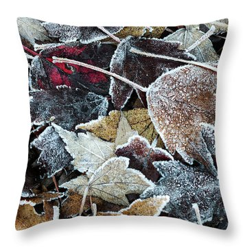 Throw Pillow featuring the photograph Autumn Ends, Winter Begins 1 by Linda Lees