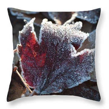 Throw Pillow featuring the photograph Autumn Ends, Winter Begins 2 by Linda Lees
