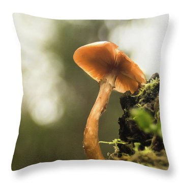 Autumn Essence Throw Pillow