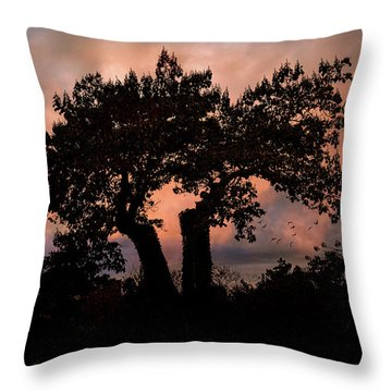 Throw Pillow featuring the photograph Autumn Evening Sunset Silhouette by Chris Lord