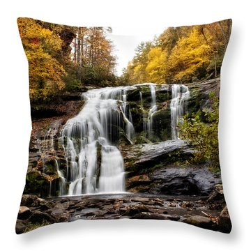 Throw Pillow featuring the photograph Autumn Fall by Chrystal Mimbs