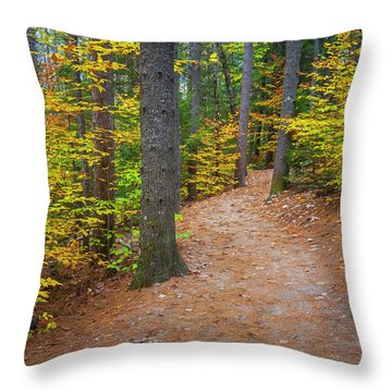 Throw Pillow featuring the photograph Autumn Fall Foliage In New England by Ranjay Mitra