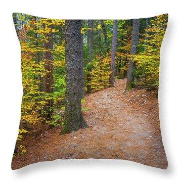 Autumn Fall Foliage In New England Throw Pillow