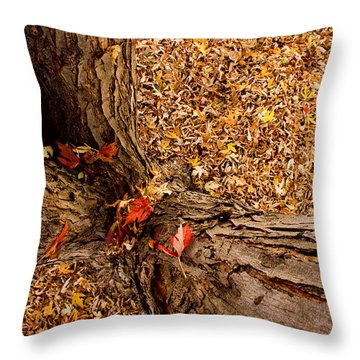 Autumn Fall Throw Pillow by James BO  Insogna