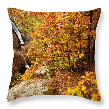 Autumn Falls Throw Pillow by Evgeni Dinev