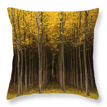 Autumn Fantasy Throw Pillow by Bjorn Burton