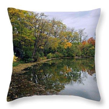 Autumn Fantasy Throw Pillow