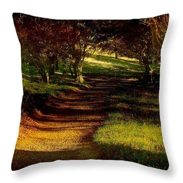 Autumn Feel Throw Pillow