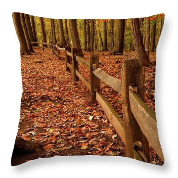Throw Pillow featuring the photograph Autumn Fence by Angie Tirado