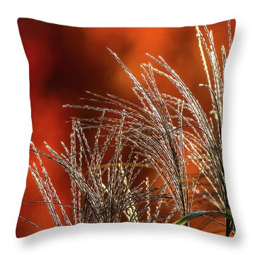 Autumn Fire - 1 Throw Pillow
