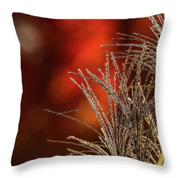 Autumn Fire - 2 Throw Pillow