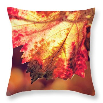 Throw Pillow featuring the photograph Autumn Fire by Melanie Alexandra Price