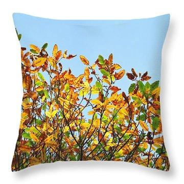 Throw Pillow featuring the photograph Autumn Flames - Original by Rebecca Harman