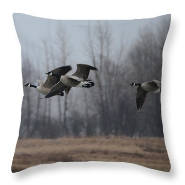 Autumn Flight Throw Pillow