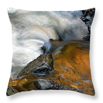 Autumn Flow Throw Pillow