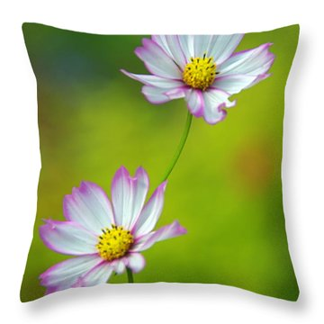 Throw Pillow featuring the photograph Autumn Flowers by Byron Varvarigos