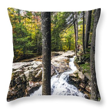 Throw Pillow featuring the photograph Autumn Flows by Anthony Baatz
