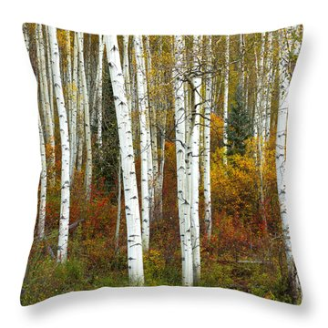 Autumn Forest Beauty Throw Pillow
