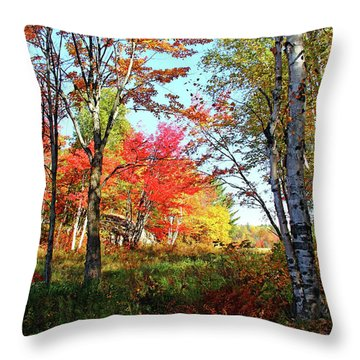 Autumn Forest Throw Pillow by Debbie Oppermann