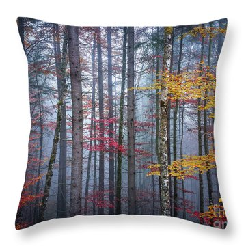 Throw Pillow featuring the photograph Autumn Forest In Fog by Elena Elisseeva