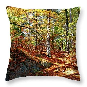 Autumn Forest Killarney Throw Pillow by Debbie Oppermann