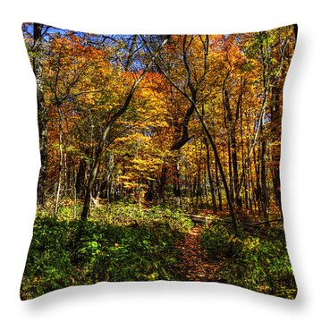Autumn Forest Path At Johnson's Mound Throw Pillow
