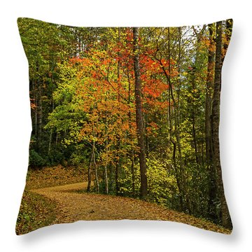 Autumn Forest Road. Throw Pillow by Ulrich Burkhalter