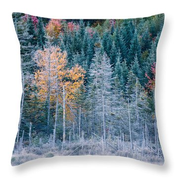Autumn Frost Throw Pillow