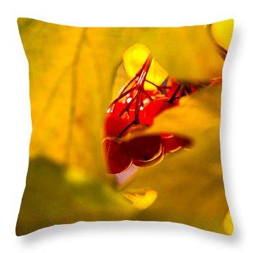 Throw Pillow featuring the photograph Autumn Fruits - Viburnum Berries by Alexander Senin