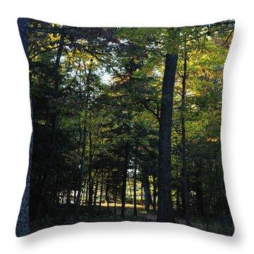Autumn Glen Throw Pillow