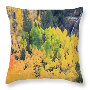 Throw Pillow featuring the photograph Autumn Glory by David Chandler