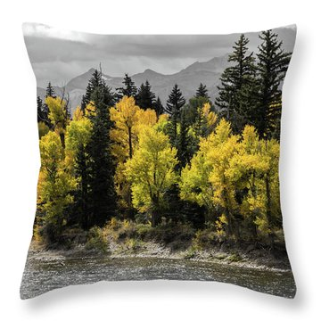 Throw Pillow featuring the photograph Autumn Glow by Colleen Coccia
