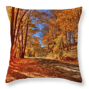 Autumn Glow Throw Pillow by Dale R Carlson