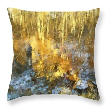 Autumn Gold  Throw Pillow