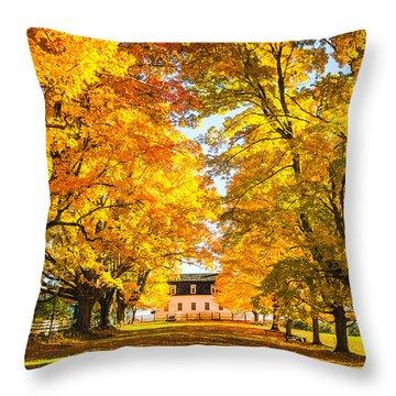 Autumn Gold IIi Throw Pillow
