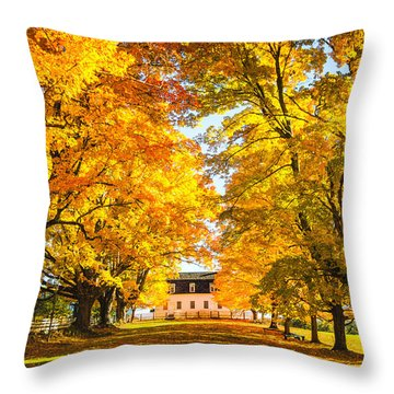 Throw Pillow featuring the photograph Autumn Gold IIi by Robert Clifford