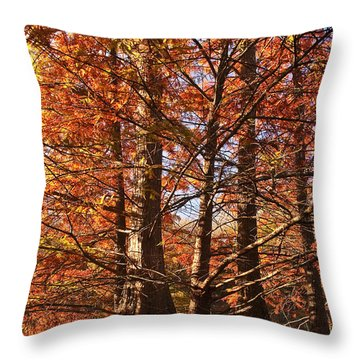 Throw Pillow featuring the photograph Autumn Grandeur At Lake Murray by Tamyra Ayles