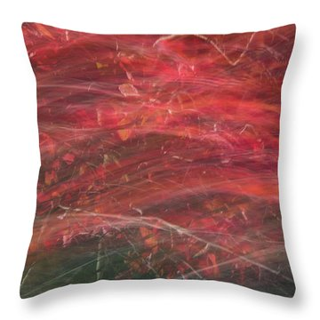 Autumn Graphics II Throw Pillow