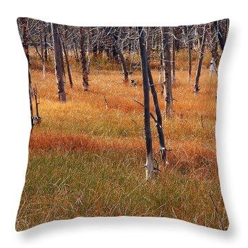 Autumn Grasses In Yellowstone Throw Pillow