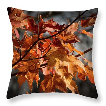 Throw Pillow featuring the photograph Autumn Gray by Kimberly Mackowski