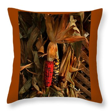 Autumn Harvest Throw Pillow by Kathleen Stephens
