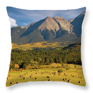 Autumn Hay In The Rockies Throw Pillow by Steve Stuller