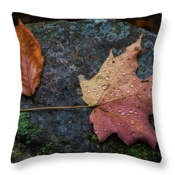 Throw Pillow featuring the photograph Autumn by Heather Kenward